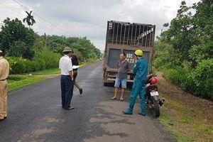 Bắt 2 xe tải chở hàng chục con heo vào vùng dịch tả lợn Châu Phi