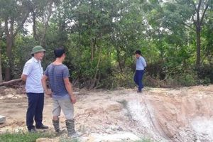Hà Tĩnh: Khuyến cáo tạm dừng việc mua bán lợn ngoại tỉnh