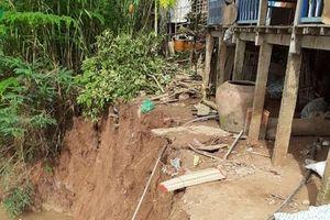 Di dời khẩn cấp 2 hộ dân do sạt lở đất phạm vi bảo vệ đê Bắc kênh Xáng