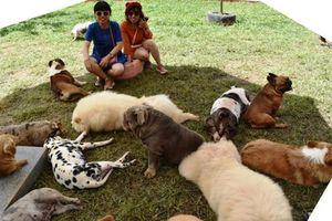 Puppy Farm: 'Địa chỉ son' mới của thiên đường du lịch Đà Lạt
