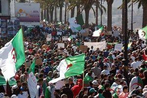 Lực lượng biểu tình Algeria kêu gọi cải cách chính trị triệt để