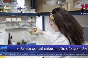 Phát hiện cơ chế kháng thuốc của vi khuẩn