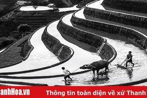 2 tác phẩm của Thanh Hóa được trưng bày triển lãm tại Cuộc thi ảnh nghệ thuật quốc tế lần thứ 10 tại Việt Nam 2019