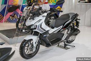 Xe ga Honda Adventure 150cc từ 56 triệu đồng tại Indonesia