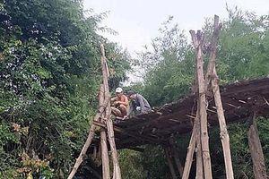 Bình Thuận yêu cầu kiểm tra vụ người chết do lọt cầu