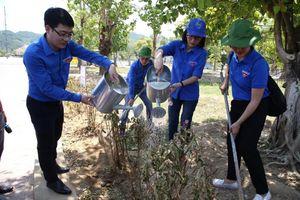 Xúc động 'Hành trình tình nguyện theo dấu lịch sử'