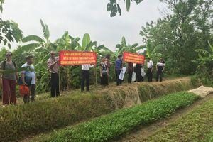 Công ty Hưng Hải bị 'tố' chiếm đoạt 248,7 tỷ đồng tại dự án Viet Ins