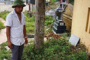 Điều tra vụ bé gái sơ sinh nặng 3kg, không quần áo phát hiện tử vong tại nghĩa trang