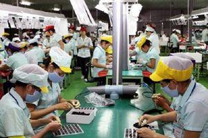 Thị trường lao động Hải Phòng: Nghịch lý cung giảm - cầu tăng