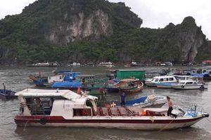Quảng Ninh: Tàu cá va chạm với tàu khách khiến 3 người bị thương