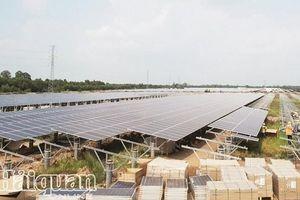 Cần đơn vị cầm trịch trong phát triển điện mặt trời