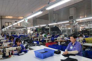 Long An: Các doanh nghiệp tạo việc làm cho trên 139 nghìn lao động