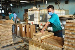 Doanh nghiệp gỗ vẫn 'lơ mơ' về giấy phép FLEGT