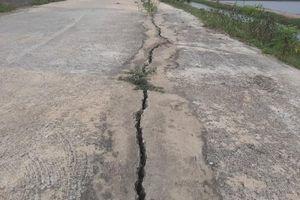 Thanh Hóa: Tuyến đê trăm tỷ đồng nứt toác sau một tháng đưa vào sử dụng