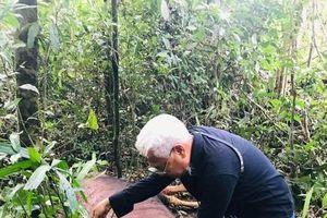Bò tót chết bất thường trong khu bảo tồn thiên nhiên Đồng Nai