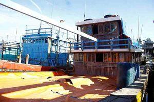 Tàu cá 3 năm bị 'bỏ rơi' ở cảng, người trông tàu không thấy chủ quay lại