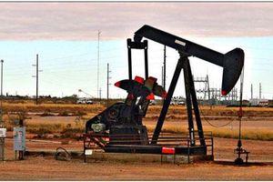 Giá xăng, dầu (25/7): Bất ngờ tụt dốc