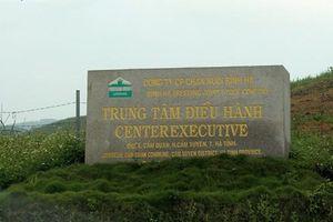 'Thông tin THACO tiếp quản dự án Chăn nuôi Bình Hà là không chính xác'
