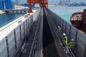 Chóng mặt với mức chi ngoại tệ nhập khẩu than