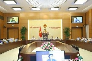 Phân công cơ quan soạn thảo 43 văn bản quy định thi hành các luật