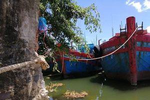 Quảng Ngãi: 'Bóng đen' nợ nần bao phủ làng biển