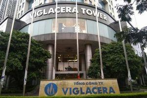 Doanh nghiệp mang 'họ' Viglacera đang kinh doanh 'thụt lùi'