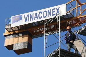 Vinaconex: Lãi trước thuế quý II/2019 bất ngờ tăng 88% lên 258 tỷ đồng