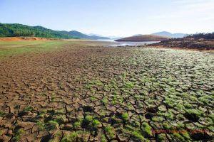 Sông Mekong cạn kiệt: ĐBSCL đối mặt hạn hán, thiếu nước, xâm nhập mặn