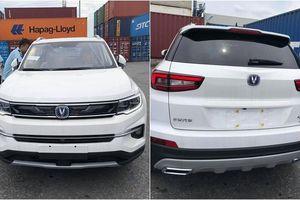 Phân khúc SUV có thêm xe Trung Quốc giá chỉ 600 triệu đồng