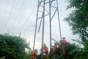 Đường dây 110KV Quảng Trị bị trộm nhiều thanh giằng thép