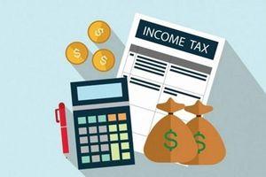 Nhiều người thu nhập khủng, thuế thu nhập 7 tháng đầu năm 'siêu to khổng lồ'