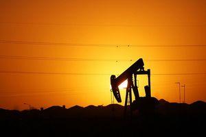 Giá dầu tăng mạnh nhờ kỳ vọng Fed hạ lãi suất cơ bản đồng USD
