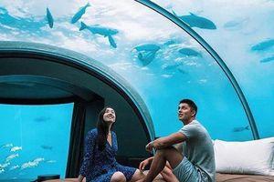 Trải nghiệm ngủ dưới biển giá 50.000 USD