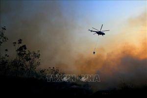 Huy động hàng nghìn cảnh sát, binh sĩ tham gia phòng chống cháy rừng