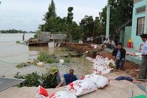 Khẩn trương khắc phục đê bao ngăn lũ bị sạt lở dọc sông Cái Côn