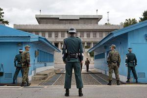 Binh sĩ Triều Tiên băng qua khu phi quân sự đào tẩu sang Hàn Quốc