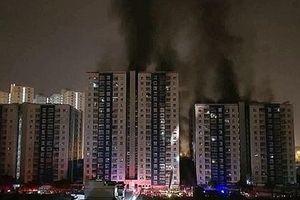 Hơn 1 năm sau vụ cháy kinh hoàng ở Carina Plaza, Năm Bảy Bảy báo lãi 'khủng'