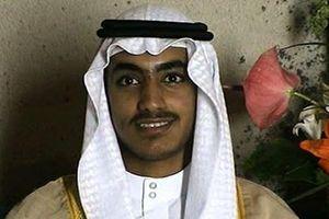 Hamza bin Laden, con trai trùm khủng bố al Qaeda đã thiệt mạng?