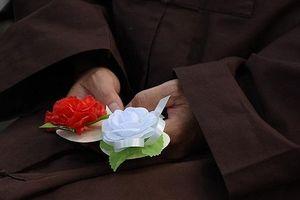 Lễ Vu Lan vào ngày nào trong năm 2019 và ý nghĩa của bông hồng cài áo