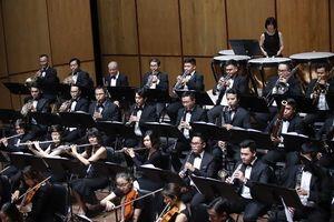 Đêm nhạc Beethoven vì nạn nhân chất độc da cam