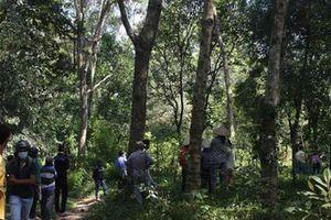 Phát hiện người đàn ông chết trong tư thế treo cổ tại vườn cây sau khách sạn