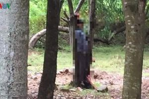 Tá hỏa phát hiện người đàn ông treo cổ tự tử ở rừng cây