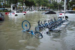 Bão Wipha đổ bộ Trung Quốc, phố ngập trong biển nước, dân đổ xô đi mua đồ tích trữ