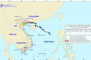 Bão WIPHA suy yếu thành áp thấp nhiệt đới