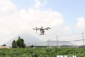 Một hợp tác xã nông nghiệp 'chi lớn' mua máy bay không người lái