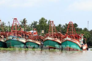 Bất cập triển khai Nghị định 67: Ngân hàng khởi kiện ngư dân