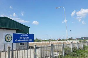 Nhà đầu tư vào Nghệ An gặp khó vì thủ tục, cơ chế (Kỳ II): Doanh nghiệp 'mắc cạn'