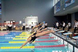 Gần 300 vận động viên thi bơi, lặn tranh cúp Sun Sport Complex 2019