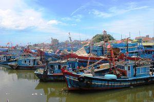 Quảng Ngãi: Làng 'tỉ phú' chìm trong nợ nần
