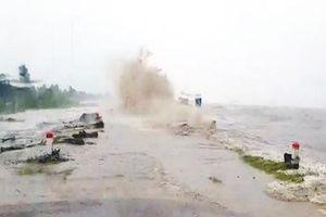 Cà Mau cấp tập hộ đê biển Tây sau đợt sóng 'cao chưa từng thấy'